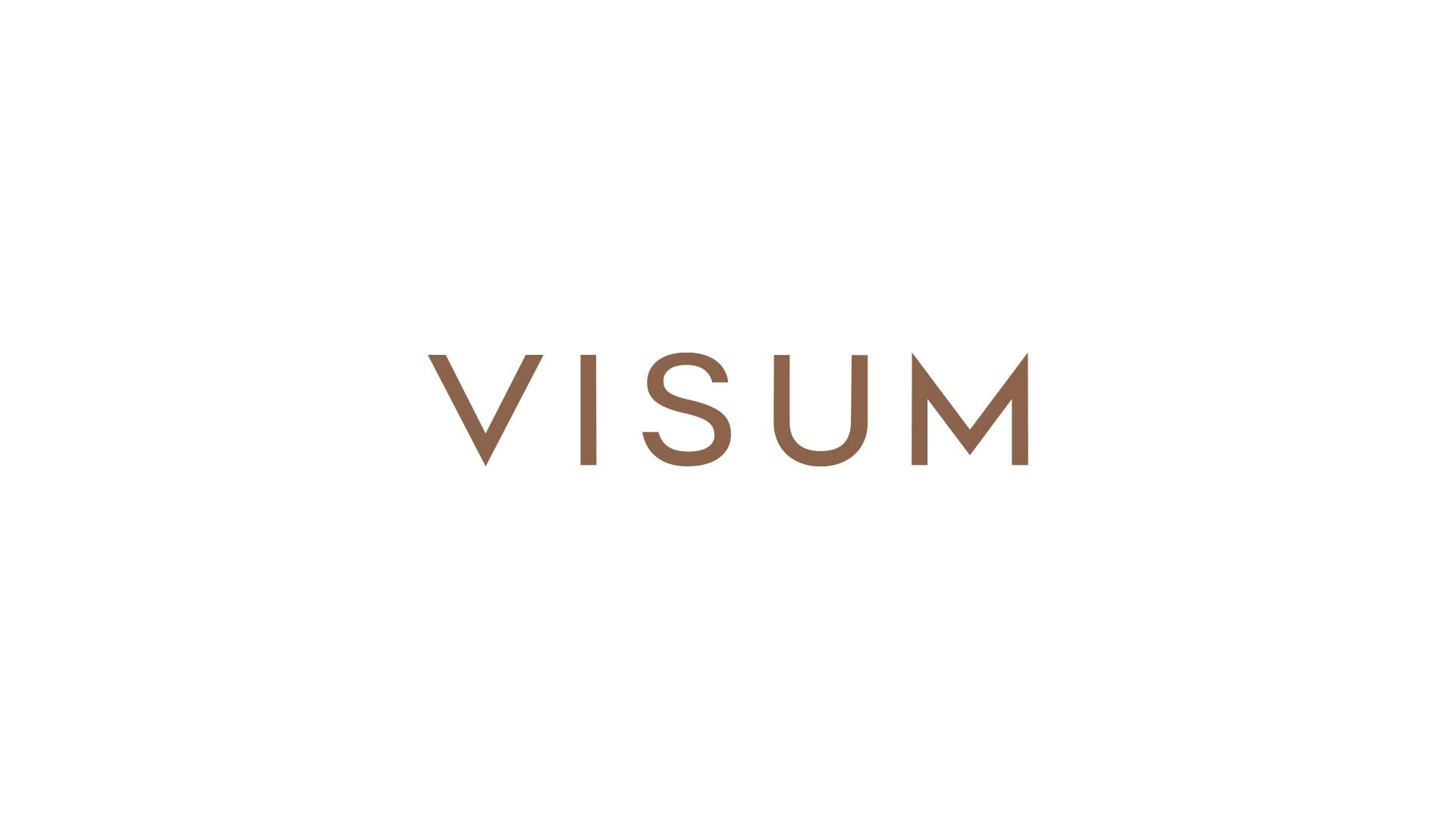 this_p_brand_visum_1